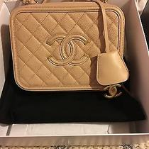 Chanel Nude Blush Vanity Case Spring 2016-Very Htf and Nwt Photo