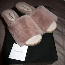 Chanel Shearling Mules/slides Photo