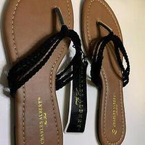 Charles Albert Flip Flops Sandal Women Size 7 Photo