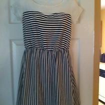 Charlotte Russe Dress Size L Brand New Photo