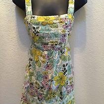 Charlotte Russe Floral Dress Cotton Summer Garden Print Medium Dress Photo