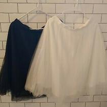 Charlotte Russe Tulle Skirt Lot 2 Ivory/black Size Xl Photo