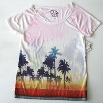 Chaser Womens M Palm Tree Graphic Print Lightweight Summer Top T Shirt New Nwt Photo
