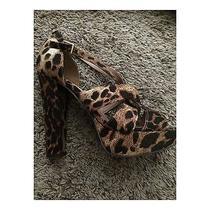 Cheetah Print Aldo Heels Photo