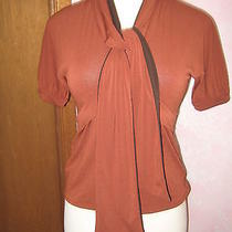 Chelsea & Theodore Umber Brown W/ Dark Brown Tie Scarf Accent Ss Stretch Top S Photo