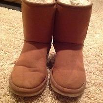 Chestnut Uggs Size 7 Photo