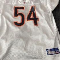 Chicago Bears Brian Urlacher Reebok Jersey Size Xl Photo