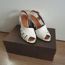 Chie Mihara Vanity Shoes Size 35 - 355 Photo