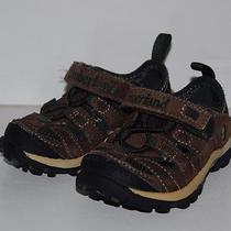 Children's Timberland Shoes- Size Toddler 5.5 Photo