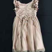 Childs Size 8 Beautiful Blush Dress Photo