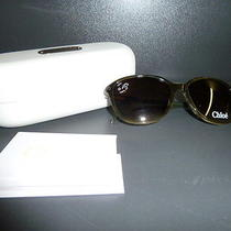 Chloe Authentic Rounded Square Plastic Frame Sun Glasses in Khaki (Cl225303) Photo