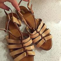Chloe Gladiator Sandals Comfy and Cute Photo