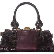 Chloe Purple Patent Paddington - Lots of Lovely Purple Photo