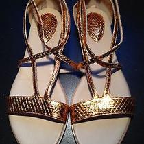 Chloe Python Metallic Sandals Photo