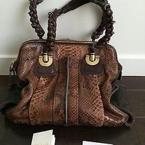 Chloe Python Shoulder Bag  Photo