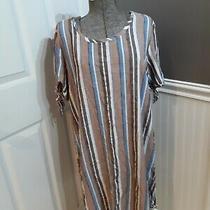 Chloerene Women's Brown/blue Striped Ss Casual Dress Sz Xl Guc Fast Ship  Photo