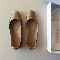 Chloe Scalloped Flats 38 Photo