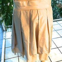 Chloe Silk Taffeta Pleated Full Skirt Dune 38/8 Photo