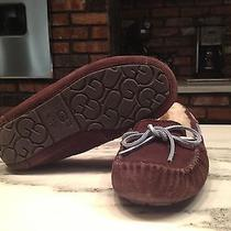 Chocolate Ugg Dakota Moccasins Photo