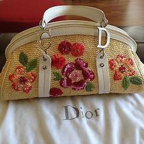 Christian Dior Baguette Handbag Photo