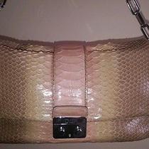 Christian Dior Python Bag Photo