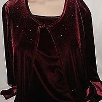 Christie and Jill Women's Blouse Top Shirt Size L Mauve Long Sleeved Velvet Photo