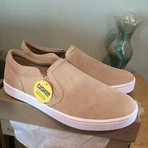 Clarks Pawley Bliss Blush Suede Sneakers Brand New in Box Sz 8 Photo
