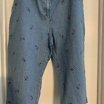 Classic Elements Petite Capri Jeans Sz Xl Embroidery Flowers All Over Preowned Photo