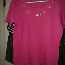 Classic Elements Pink Knit Top in Medium Photo