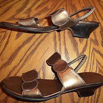 Classic Elements Sandals Women's Size 8 1/2 M     Barnes Photo
