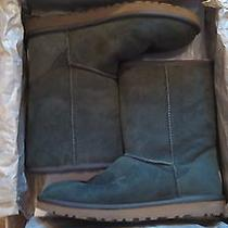 Classic Short Uggs Green  Photo