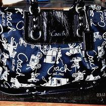 Clean Coach Ashley Horse and Carriage F15656 Blk Signature Holiday Winter Summer Photo