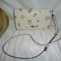 Coach 3804 Wildflower Print Hayden Clutch Crossbody Handbag Chalk/multi Leather Photo