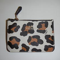 Coach 64072 White Ocelot Print Key Pouch Wallet With Key Ring Nwt Photo