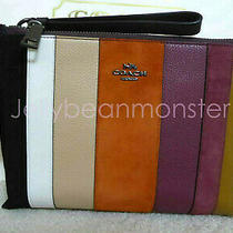 Coach 76179 Charlie Patchwork Stripes Leather Pouch Bag Purse Beechwood Multi Photo