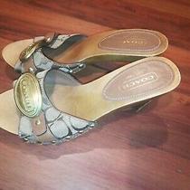Coach Addisyn Slip on Open Toe Heel Sandals Womens Leather Mules Size 5.5 M Photo
