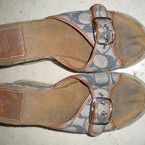 Coach Alyssa Blue Logo'd Platform Sandals 7 1/2 B Cheap...priority Ship Usa Photo