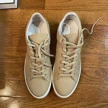 Coach and Four   Style Easyday Suede Beige  Sneakers Size 8m  125 Photo
