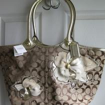 Coach Applique Floral Bleeker Shopper Tote Khaki Gold Signature 16276 Photo