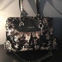 Coach Ashley Horse & Carriage 15656 Black Gray Signature Holiday Winter Summer Photo