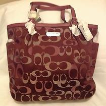 Coach Bag  Photo
