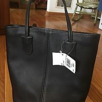Coach Bag New With Tag Photo