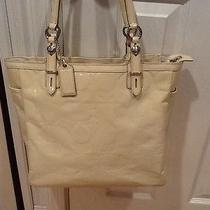 Coach Bag/tote Photo