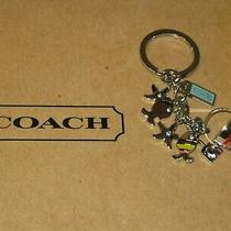 Coach Beach Theme Key Ring 92097 Sand Pail Fish Starfish Photo