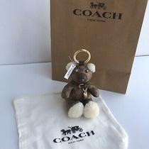 Coach Bear Keychain Ring Bag Charm Signature Canvas/leather Limited Edition Nwt Photo