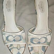 Coach Beige Blue Sandals Size 8 Great Condition Retail 150 Photo