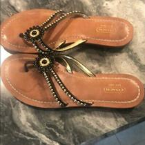 Coach Black Gold Sylva Black/gold Beaded Flower Sandals. Photo