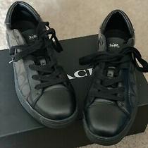 Coach Black Low Top Shoes Size 11 Photo