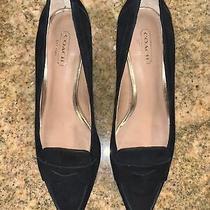 Coach Black Suede Kitten Heel Pointed Toe Sz 6.5 Nwob Photo
