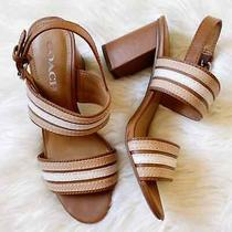 Coach Block Heel Sandals Genuine Leather Brown Nude Summer Dressy Size 7 B Photo